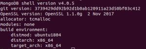 MongoDB Installation Output